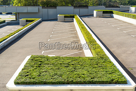 parking lot landscaped with boxwood