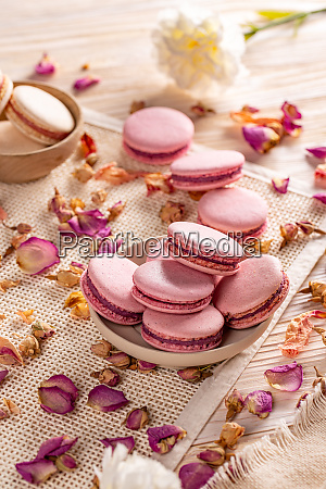 french macarons dessert