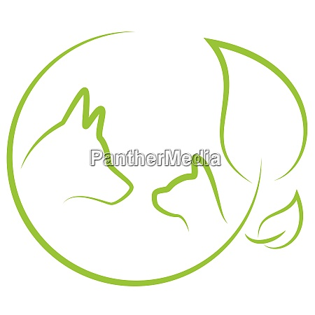 dog cat leaves plant veterinary practitioner