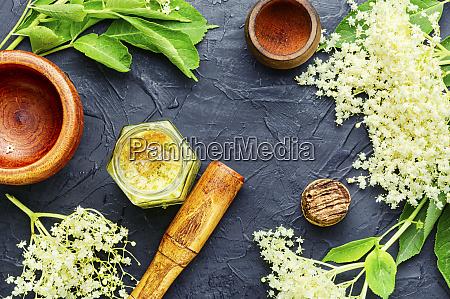 elderberry flowers in herbal medicine