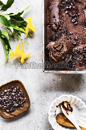 chocolate banana ice cream with cacao