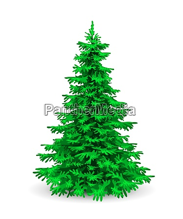 fluffy green christmas tree