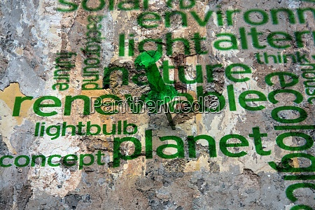 renewable energy text on wall