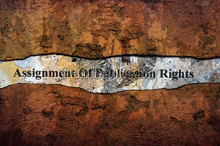 assignment of publication rights text on