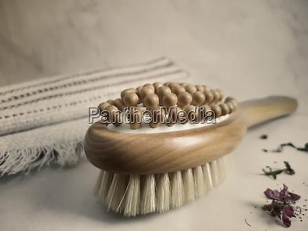 wooden massage anti cellulite brush on