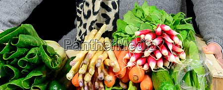 small crate with various seasonal vegetables