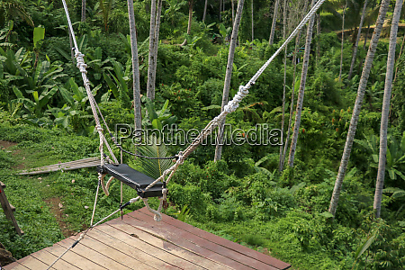 a swing over a high canyon