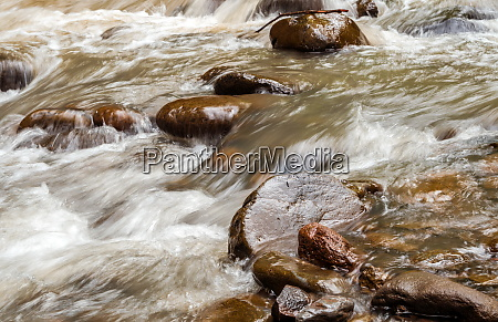 wild water creek with flowing water