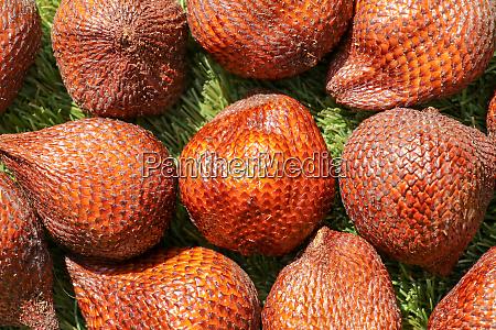 full frame shoot of snake fruit