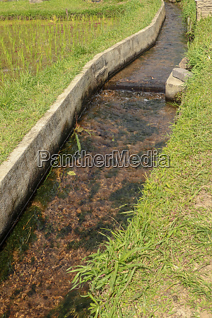 irrigation canal called subak a traditional