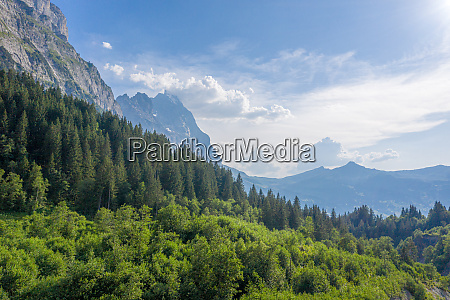 wonderful nature and landscapes in switzerland