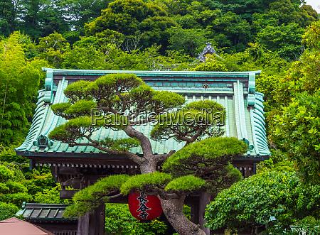 famous hase dera temple in kamakura