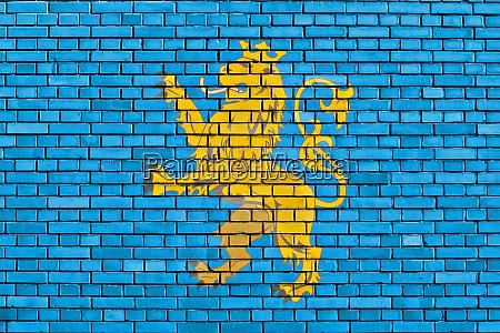 flag of lviv oblast painted on