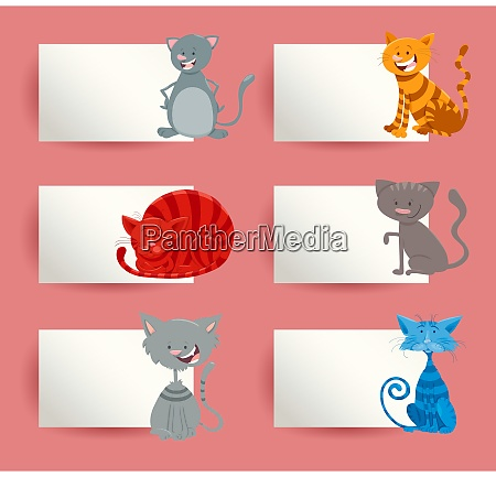 cats and kittens cartoon cards design