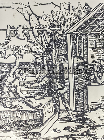 cinephalic creatures sharing human flesh 1535