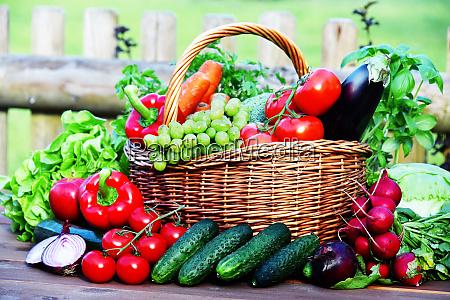 variety of fresh organic vegetables in