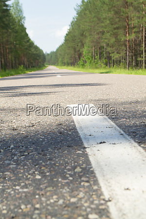 empty road with forest landscape concept