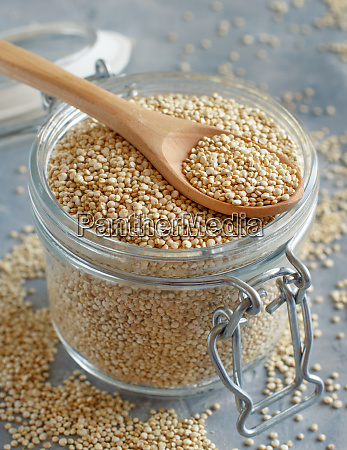 dry white quinoa seeds in a