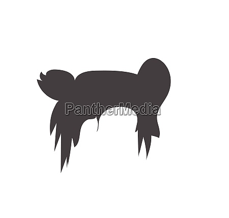 woman hairstyle element icon vector illustration