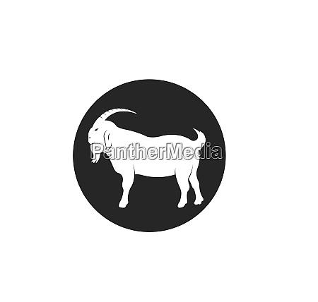 goat logo template vector illustrtion