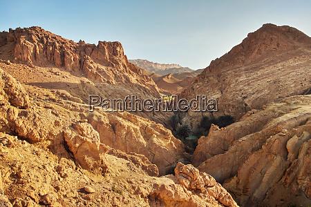 dry rocks in desert lit by