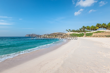 oasis beach in salalah oman arabian