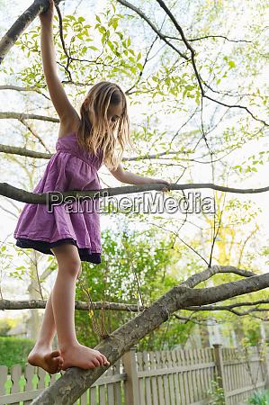 girl 6 7 climbing tree