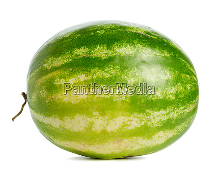 green striped whole round watermelon isolated