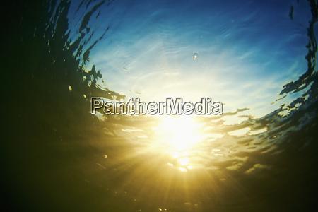 underwater view tranquil sunshine