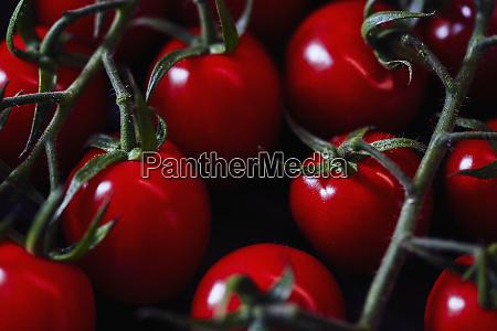 close up vibrant red vine cherry