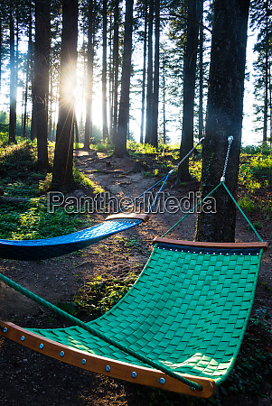 hammock during a hike in the