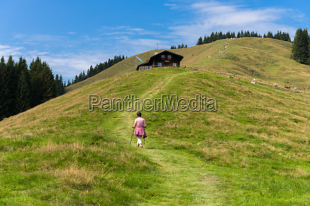 hiking on zwiesel in alpine upland