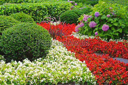 cultivated garden