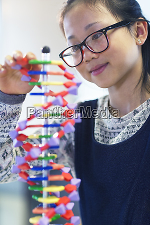 girl student examining dna model in