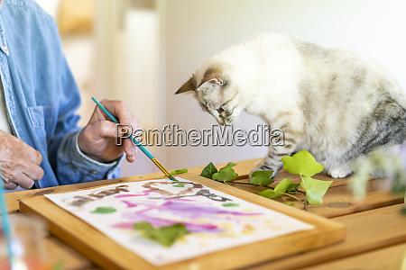 cat looking at senior man painting