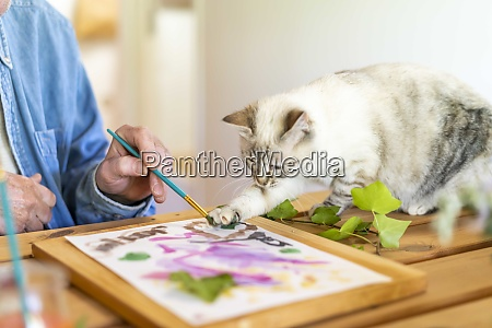 cat painting with senior man on