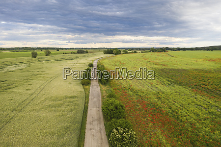 germany brandenburg drone view of countryside