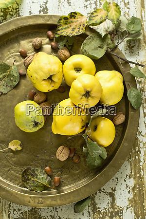 metal tray with hazelnuts walnuts and