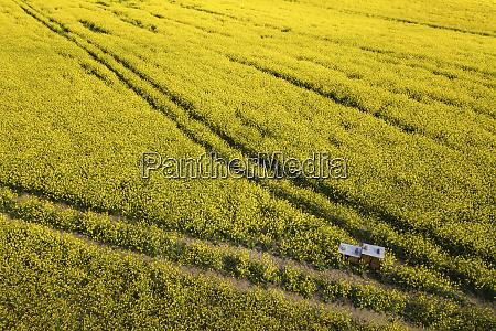 germany brandenburg drone view of vast