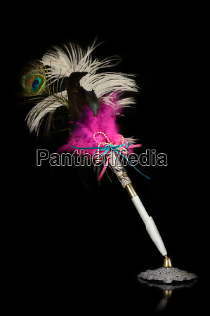 isolated feather pen