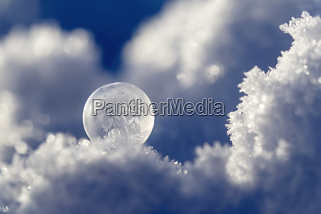 frosted bubble in winter