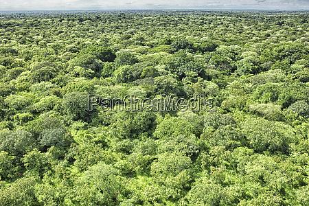 democratic republic of congo aerial view