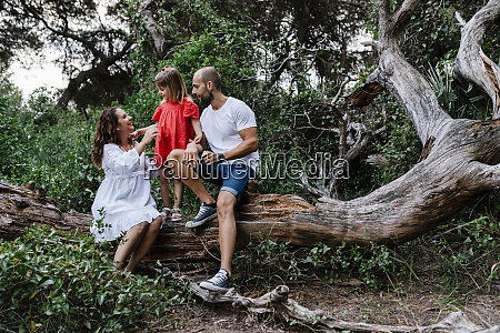 family relaxing on fallen tree in