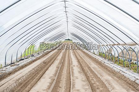 interior of empty greenhouse
