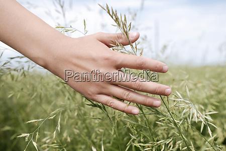 boys hand touching grass close up