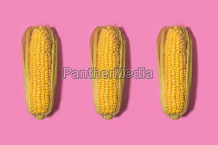 studio shot of three corns against