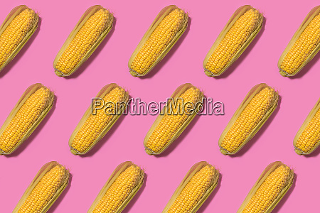 pattern of corns against pink background