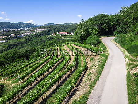 italy veneto verona drone view of