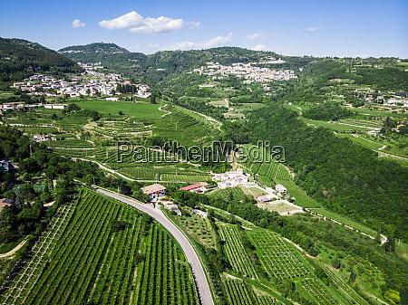 italy veneto verona drone view ofvalpolicellavineyards