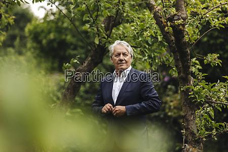 confident senior businessman standing at a